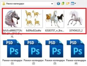 лошади-пнг